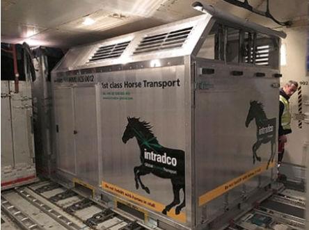 Transporte de animais vivos